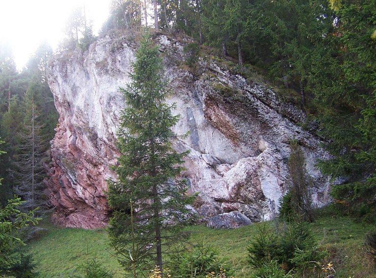 Rezerwat przyrody Zaskalskie-Bodnarówka